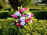 Waterbaby Flowers